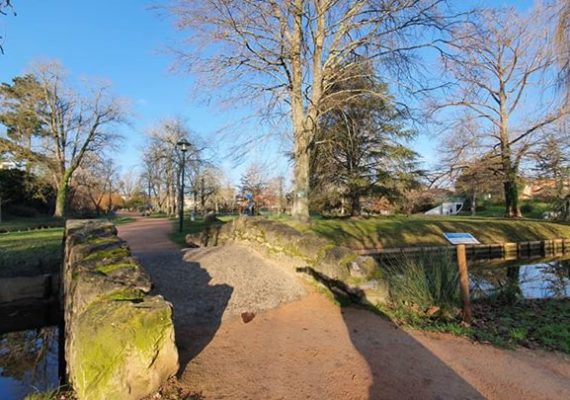 Traverser le parc Jean Jaurès de Muret pour me rendre à un rendez vous m a donné l envie de vous souhaiter à tous une très belle journée ensoleillée…