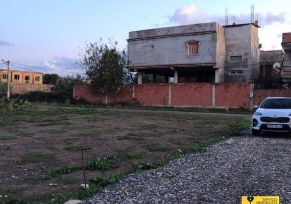Services Immobiliers Alger vous propose la vente de terrains urbanisés, situés centre ville de Ouled Chebel, Wilaya d'Alger, une commune rural et paisible au centre de la Métidja.