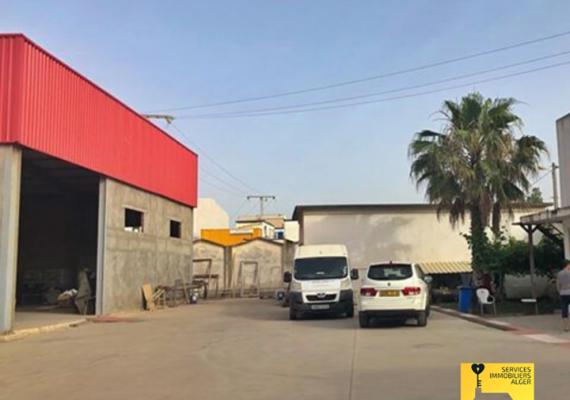A vendre deux (02) hangars dans un terrain ouvert (possibilité de vendre un seul hangar), situés dans la micro zone industrielle de Bordj El kiffan, Alger.
