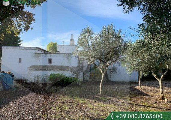 In contrada Romanelli proponiamo un'ampia abitazione indipendente 🏡 con circostante terreno di circa 8500 mq e caratteristico forno.