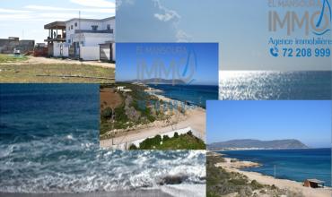 offre imbattable terrain à plage dar allouche kélibia