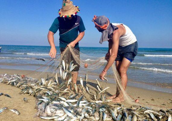 Ouedlaou était un petit village de pêcheurs. Le poisson fait encore partie du menu quotidien aujourd'hui. Les gens connaissent la variété des poissons de la Méditerranée et, selon le type de poisson, ils savent comment les utiliser correctement dans leur culture culinaire variée.