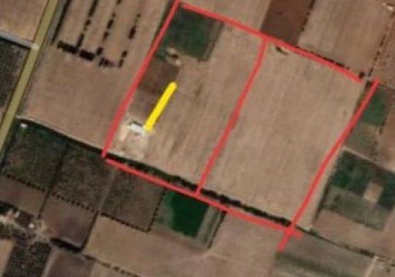 A VENDRE un terrain agricole à Gdeyel dans la wilaya d'Oran avec acte de concession de 6 hectares
