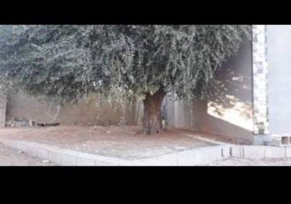 • شارع العزيب🛣🛣 موقع ممتاز تبعد عن القطران حوالي 300م ، وعلى رئيسي الخضرة 800م..