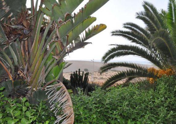 Villas à Sidi Boulfdail à 1 heure de route d'Agadir, dans un complexe touristique pied dans l'eau, salon, deux chambres, cuisine, salle de bain et toilette avec balcon et terrasse, vue dégagée sur mer. Pour toute réservation et information veuillez contacter :