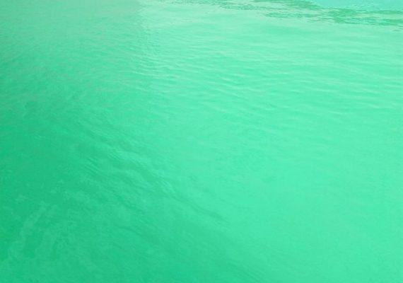 des appartement dans une résidence avec piscine collectif , au cœur de la zone touristique , a 600 metre de l'hotel vincci résort , la mer est accessible a pied , climatisation dans tt les pièces