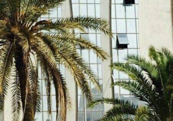 L'immeuble GAZBAR , composé de 5 étages et équipé d'un ascenseur de grande marque, est situé juste à coté de la gare de GABES au centre ville.