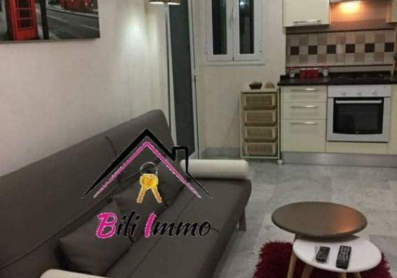 Agence Bili Immobilière vous propose un luxueux appartement s+1 haut de gamme haut standing pour location annuelle
